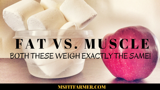 Why Women Should Ditch the Treadmill and Lift Weights | More Helpful Health Tips at https://msfitfarmer.com