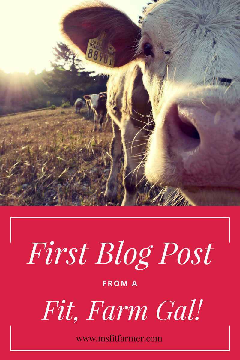 Hello world! An Introduction from a Fit Farm Girl!